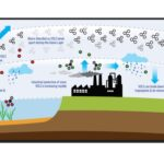 Ozone layer cycle