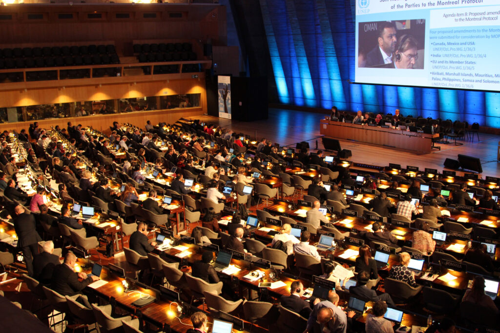 Photo of July 2015 Open-Ended Working Group (OWEG) of the Parties to the Montreal Protocol meeting in Paris  by IISD/ENB (www.iisd.ca/ozone/oewg36/24jul.html)